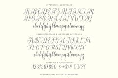 Chadina Script Product Image 6