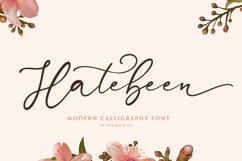 Hatebeen - Modern Script Font Product Image 1