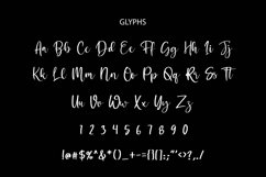 Bitheris Script Brush Font Product Image 2