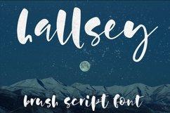 Hallsey - lowercase script font Product Image 8