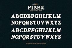 Fiber - Vintage Serif Font Product Image 6