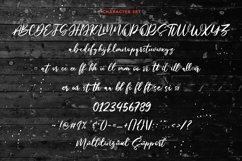 Mistychain Brush Script Font Product Image 5