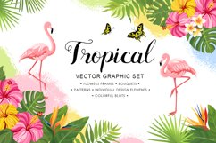 Tropical vector graphic set Product Image 1
