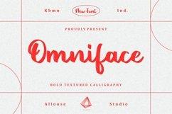 Web Font - Omniface Product Image 1