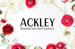 Ackley Beautiful Sans Serif Typeface Product Image 1
