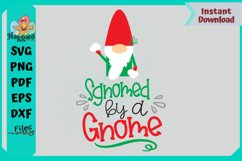 Sgnomed by a Gnome Product Image 2