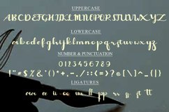 Capolista Modern Calligraphy Typeface Product Image 5