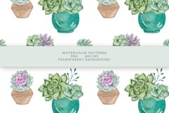 Succulents Seamless Patterns Product Image 11