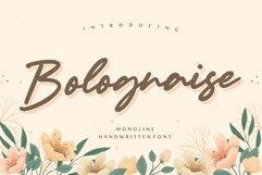 Bolognaise Monoline Handwritten Font Product Image 1