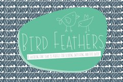 Bird Feathers Hairline Font, Scoring, Sketching, Foil Quill Product Image 1