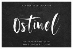 Ostinel SVG Font Product Image 2