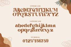 Beachfly - A Classy Serif Typeface Product Image 3