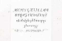Arctina Script Product Image 2