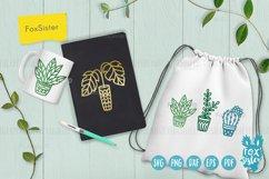 Plants svg bundle, House plants svg, succulents cut file Product Image 5