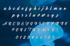 Web Font Plankton Product Image 2