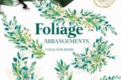 Foliage - Watercolour Leafs Product Image 5