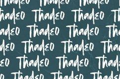 Shegard | A Stylish Brush Font Product Image 6