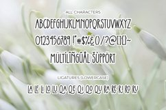 Applique Product Image 6
