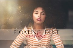 Floating dust photographic overlays Product Image 1
