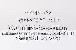 Acacio Serif 2 Font Family Pack Product Image 4