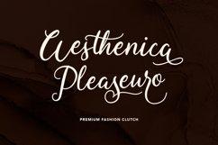Fallisanta Flourish Font Product Image 2