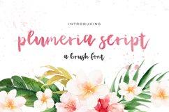Plumeria Brush Script Product Image 1