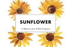 Sunflower Illustrations Watercolor | Clipart PNG Product Image 3