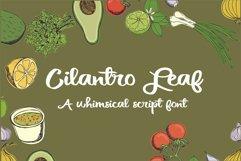 PN Cilantro Leaf Product Image 1