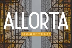 Allorta Product Image 2