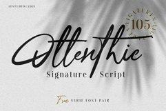 Ottenthic Signature Script Product Image 1