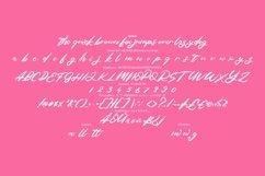 Fabela | Feminie Script Font Product Image 6