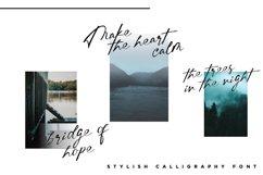 Erlina. Stylish Calligraphy Font Product Image 5
