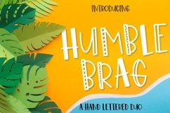 Bundle of 20 Craft Friendly Fonts! Product Image 4