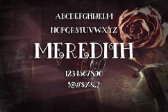 Meredith Font Product Image 2