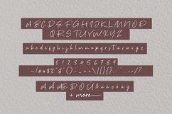 Brown Pen Script Product Image 6