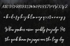 Hendryan Script Product Image 4