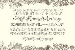 Merlion Script Product Image 6