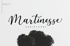 Martinesse - Script Font Product Image 1