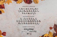Amerisune Font Product Image 2
