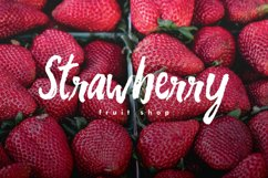 Web Font Andrade Typeface Product Image 5