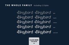 Skybird Family - Crazy, unique & retro Product Image 2