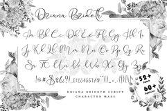 Driana Brideth Product Image 6
