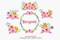 Bergenia - Digital Watercolor Floral Flower Style Clipart Product Image 3