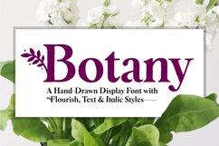 Botany Font Family Product Image 1