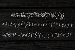 Benefits pumpkin Script Product Image 3
