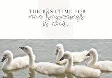 Blooming - Handwritten Font Product Image 4