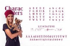 BarkWise - Multi-Purpose Serif Font Product Image 2