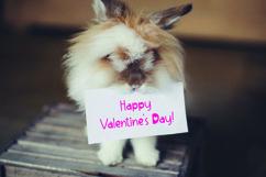 Web Font Lovable - Sweet Valentine Font Product Image 4