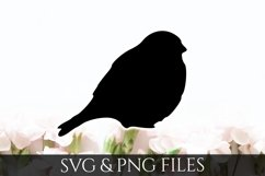 Bird SVG & PNG File Product Image 1