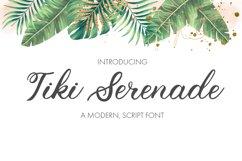 Wedding Script Font Product Image 1